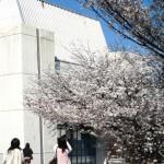 春爛漫の御井キャンパスです
